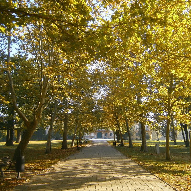 Zámocký park známy i neznámy
